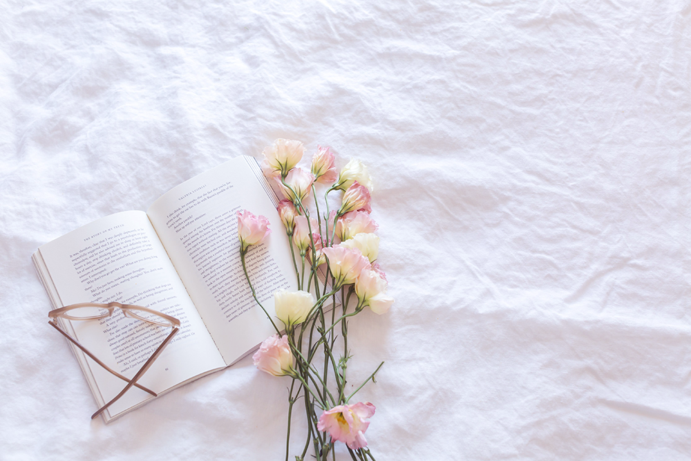 5 Books I've Loved This Year